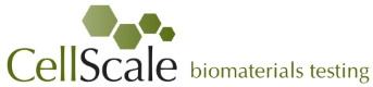 CellScale