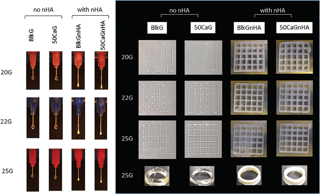 CellScale User Publication Highlight: 3D Bioprinting with Methacrylated Gelatin Upon Inclusion of Chroride Salt and Nano-Particles