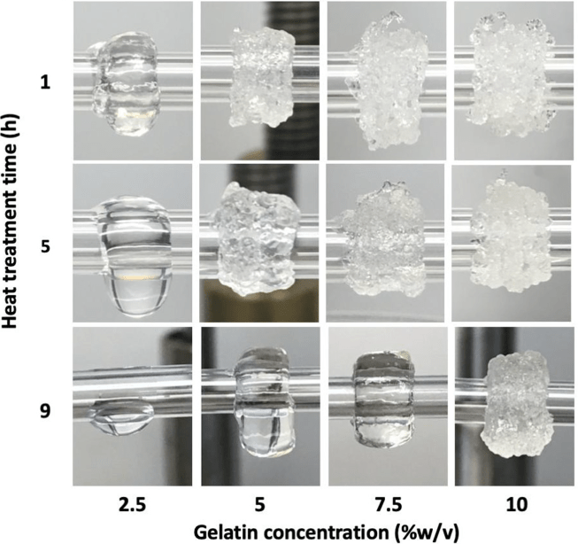 CellScale User Publication Highlight: A Bioink Blend for Rotary 3D Bioprinting of Vascular Constructs